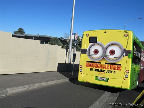 Advertising on back of bus - Auckland