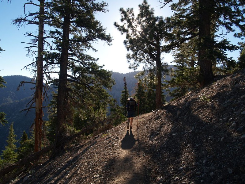 PCT - hiking toward Little Jimmy Campground