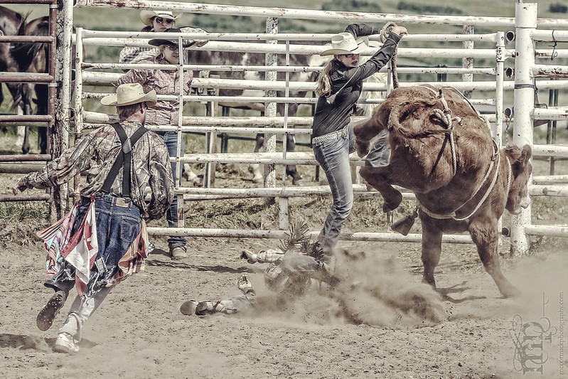 Gooseberry Lake : 4-H Rodeo 2013 : Des : Think Fast