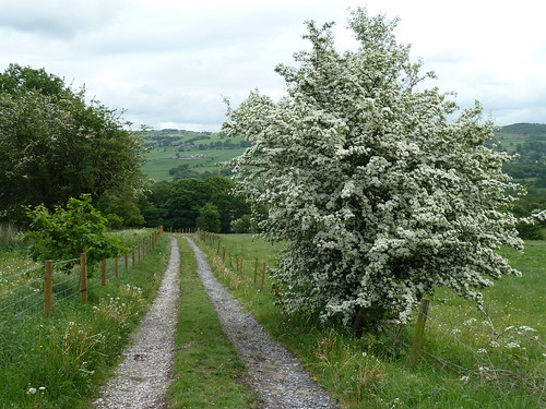 A walk from Mow Cop in Staffordshire ~ May 2011.