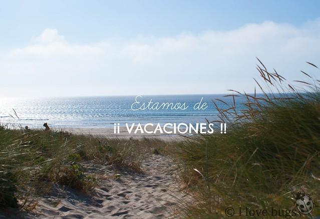 VACACIONES: CAMPO Y PLAYA