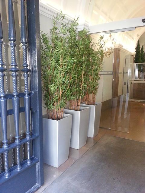 Flickr plantas artificiales for Casa cristina plantas artificiales