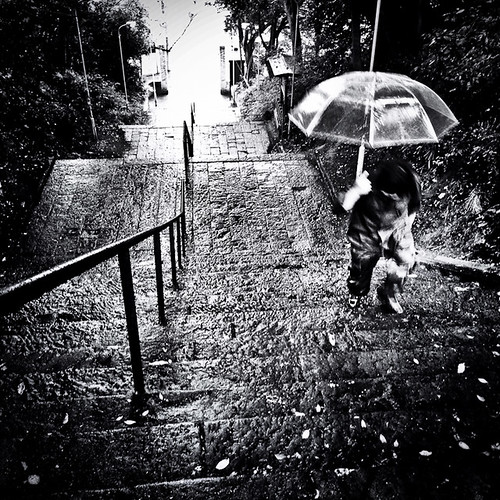 Up the Temple Steps, Pre Typhoon, Ichikawa, Chiba, Japan