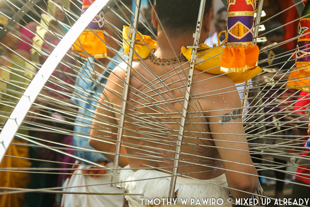 Malaysia - Penang - Arulmigu Sri Balathandayuthapani Temple - Thaipusam - The piercing on the body of a devotee