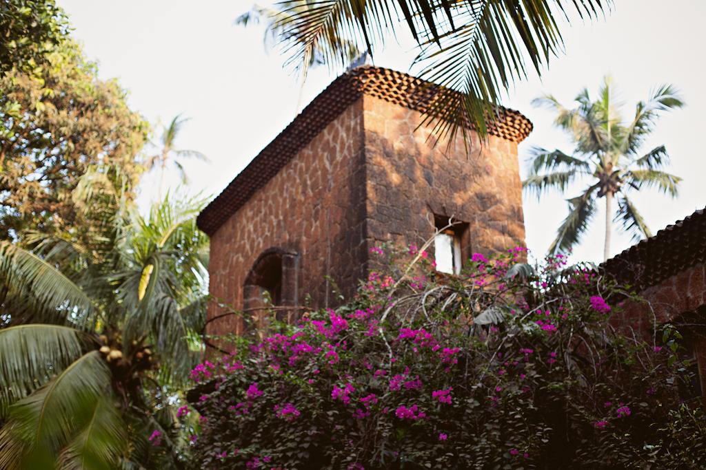 Фотосъемка Гоа, фотосессии Индия, фотограф в Индии, Калангут