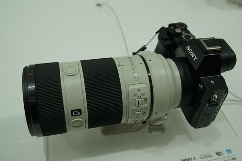 DSC05175.JPG