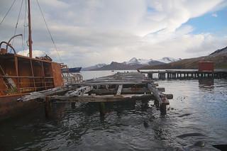 513 Grytviken