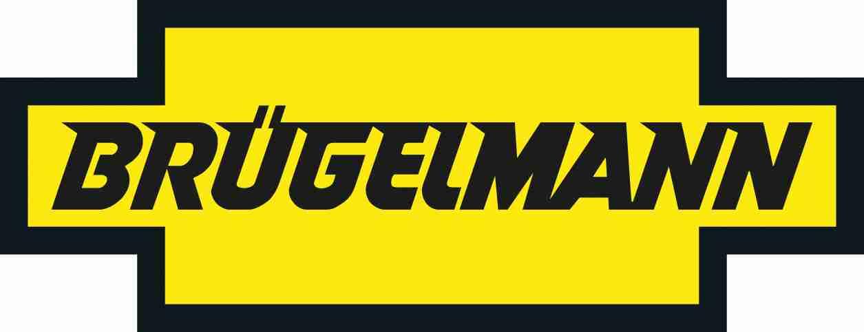 Bruegelmann
