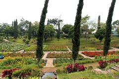 Selecta Gardens