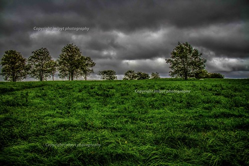 sky storm tree green nature grass skyline canon landscape photography arbres hdr herbe tempête natureetpaysages