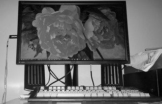monitor flash (2)