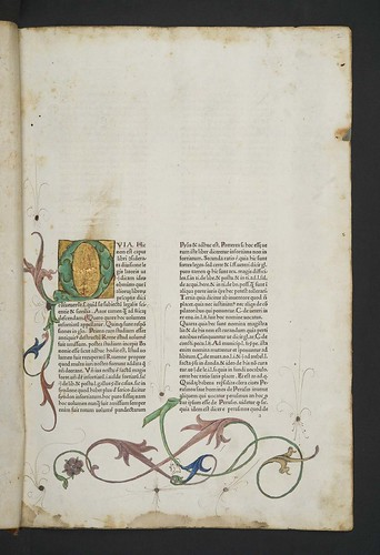 Illuminated and decorated page in Bartolus de Saxoferrato: Super prima parte Infortiati
