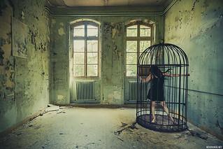 « Chacun est enfermé dans sa conscience comme dans sa peau. » - Arthur Schopenhauer