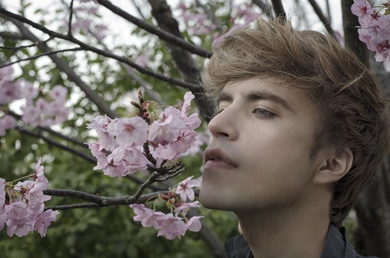 Japanese Cherry 2
