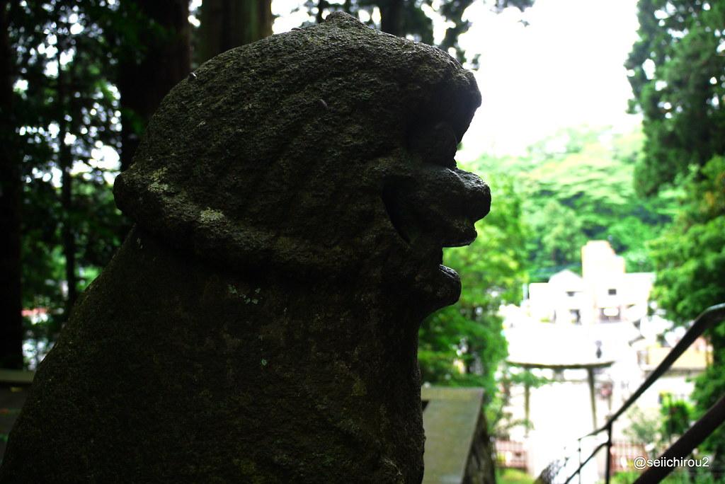 鹽竈神社 狛犬