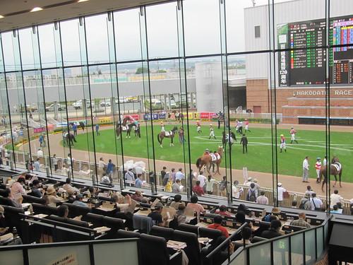 函館競馬場のパドックシートからの眺め