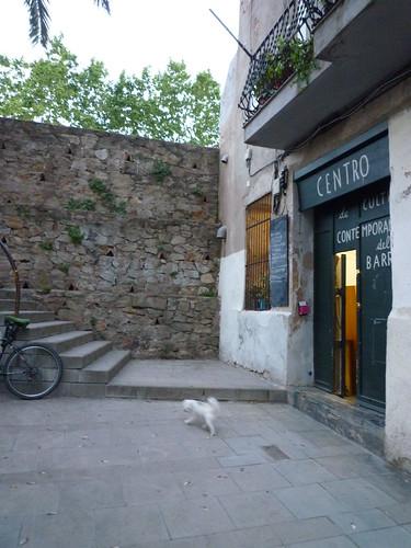 Centro de Cultivos Contemporáneos del Barrio