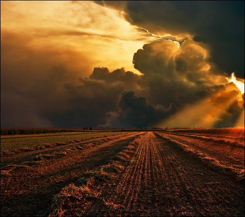 light sunset shadow red summer sky orange film face up field yellow clouds landscape photography photo nikon europa day peace shadows open view outdoor space serbia fine paisaje fantasy valley end fields agriculture paysage landschaft furrows vojvodina srbija vajdasag pejzaž vertorama beska katarinastefanovic katarina2353