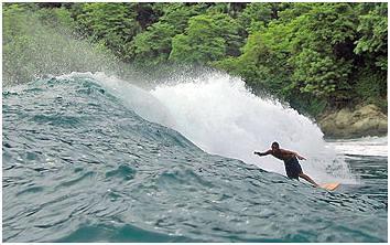 surfing manuel antonio