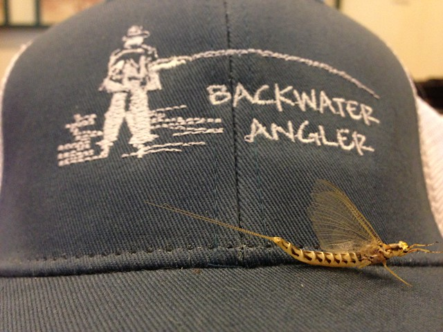 Backwater Angler Hats