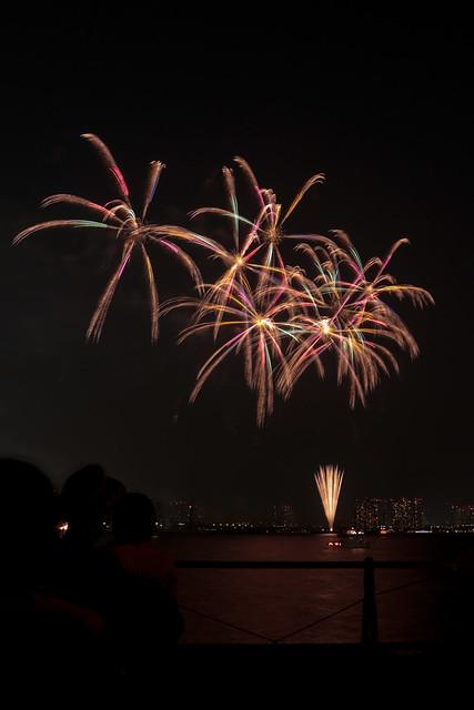 東京湾大華火 2013 Tokyo Bay Grand Fireworks