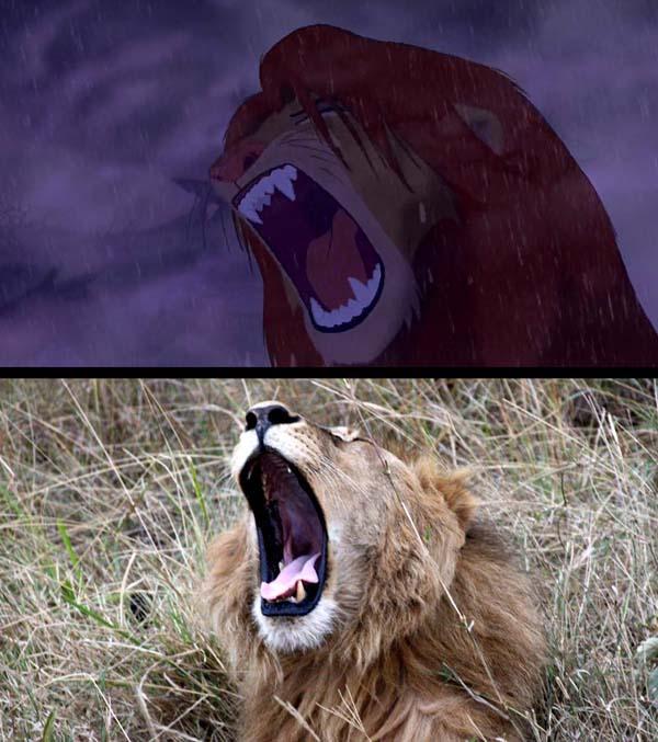 和邪社 图毒生灵 狮子王 (21)