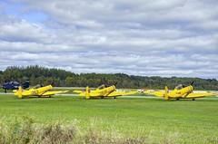 RCAF World War Two era trainers