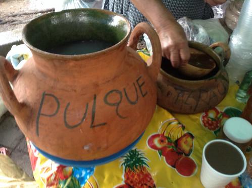 Pulque y Tepache de Doña Marina, Llano Park @ Oaxaca 09.2013