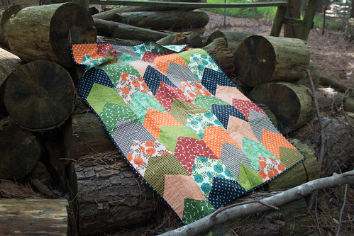 Arrow Tail Quilt Front