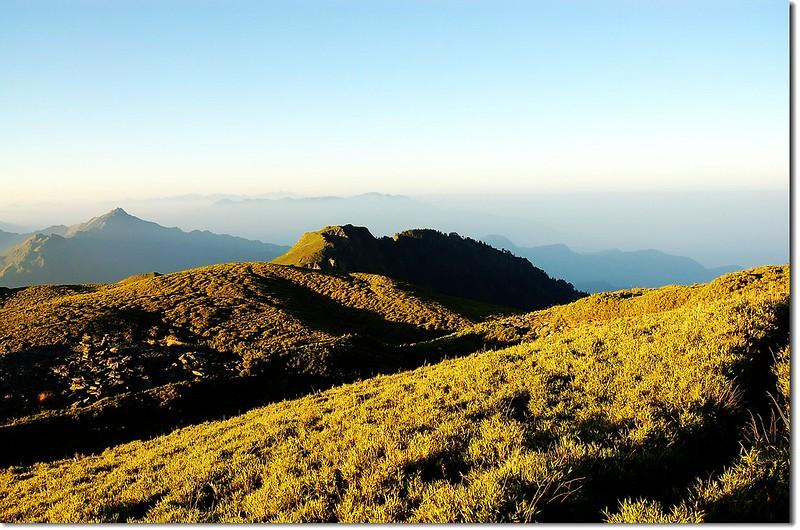 奇萊南峰箭竹坡 3