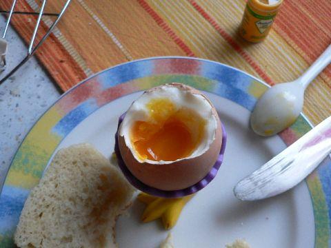Alles für das Ei 011