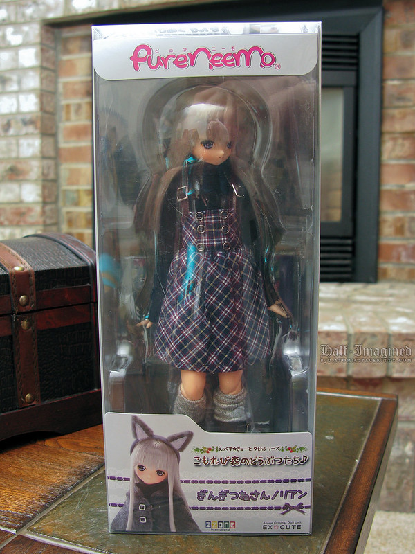 Azone Silver Fox Box Opening (2 of 8)