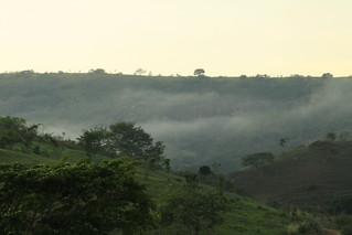Rio do Prado/Palmópolis