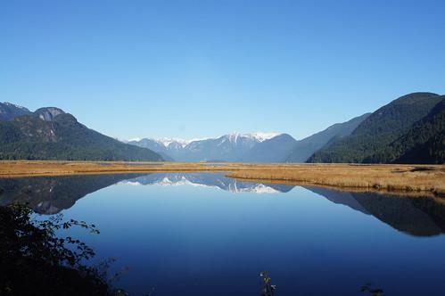 canada nature beautiful outdoors bc pittlake