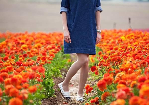 נעלי אספדריל ,בלוג אופנה, קטיף נוריות, שמלת ג'ינס, fashion blog, ranunculus field, denim dress, espadrilles