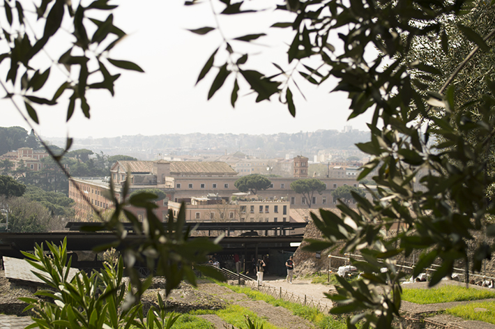 rome_view