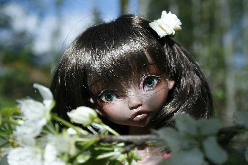 Façon Badou : mes petites merveilles (Grosse MAJ p11♥ 28.08) - Page 5 14129893854_c2a77a2a8a_c