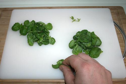 14 - Basilikumblättchen abzupfen / Pick basil leaflets