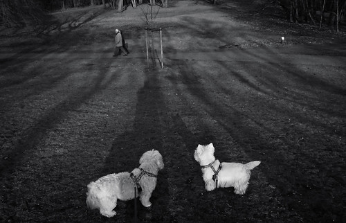 """""""Hey ! Look at those two !"""",  Streetphotography, B&W."""