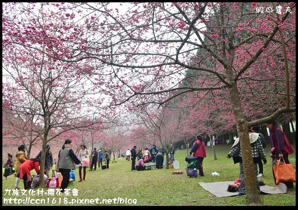 九族文化村-櫻花茶會DSC_4224
