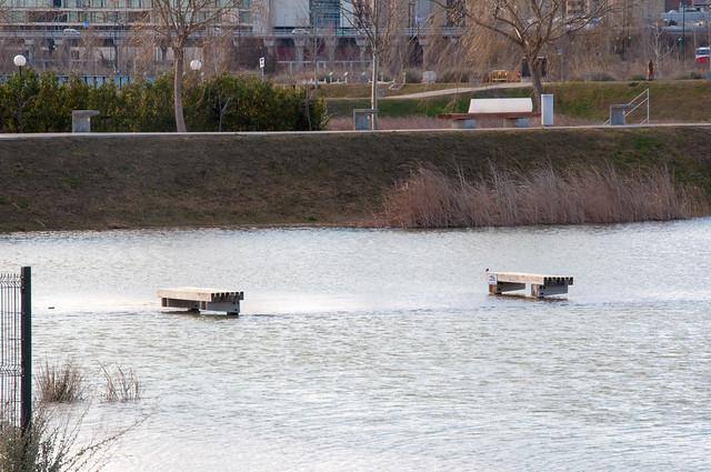 Crecica Ebro Enero 2015-12