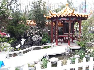 CIRCLEG 遊記 維多利亞公園 銅鑼灣 花展 2016 (32)