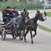 Kasaške dirke v Komendi 29.05.2016 Kmečke vprege