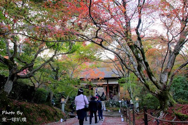 嵐山旅遊景點-常寂光寺06