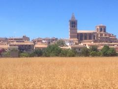 No sólo campos tiene Castilla #saroqueta #mallorca #mallorcagram #quiettime #igersoftheday #igersmallorca #hinl #instatravel #travel #sesilles #illesbalears #sineu