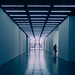 White Cube Gallery by {Laura McGregor}
