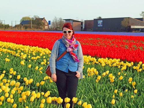 tulips me