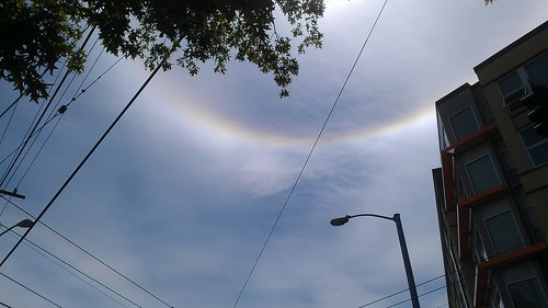 Sun dog 2 by christopher575