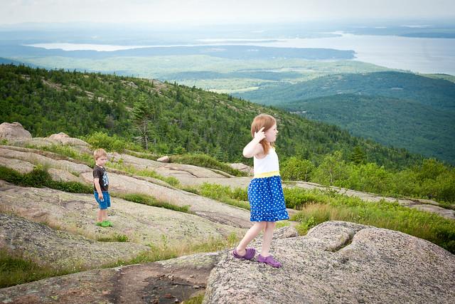 Acadia (1 of 1)