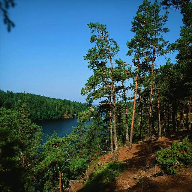 Большая Никоновская бухта  Most of Nikon's Bay